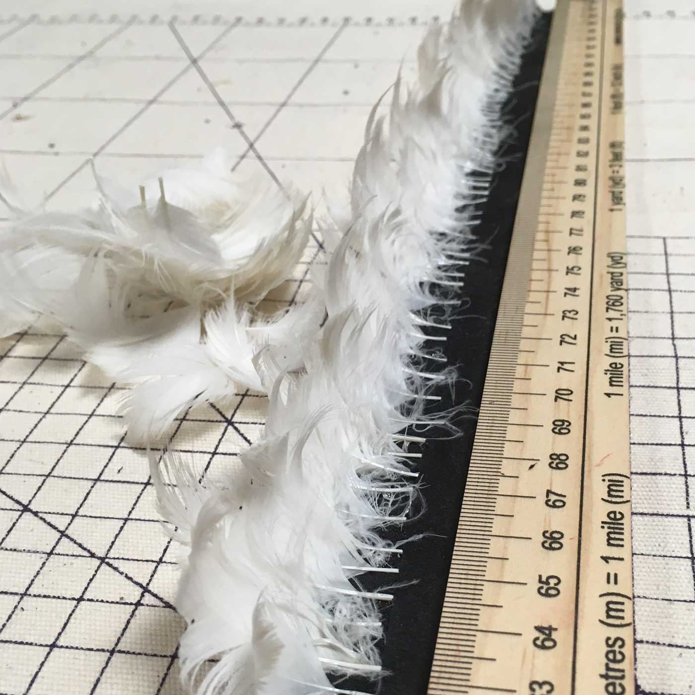 Cabine d'essayage Foulque-macroule plumes